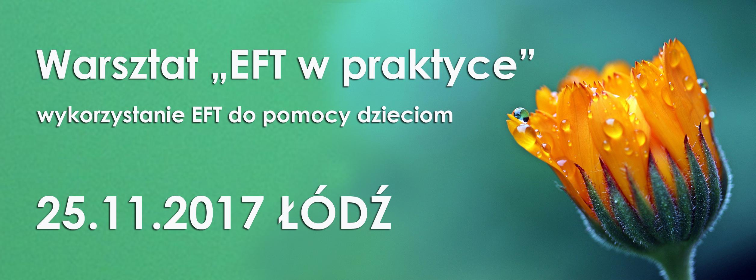 warsztat_EFT2